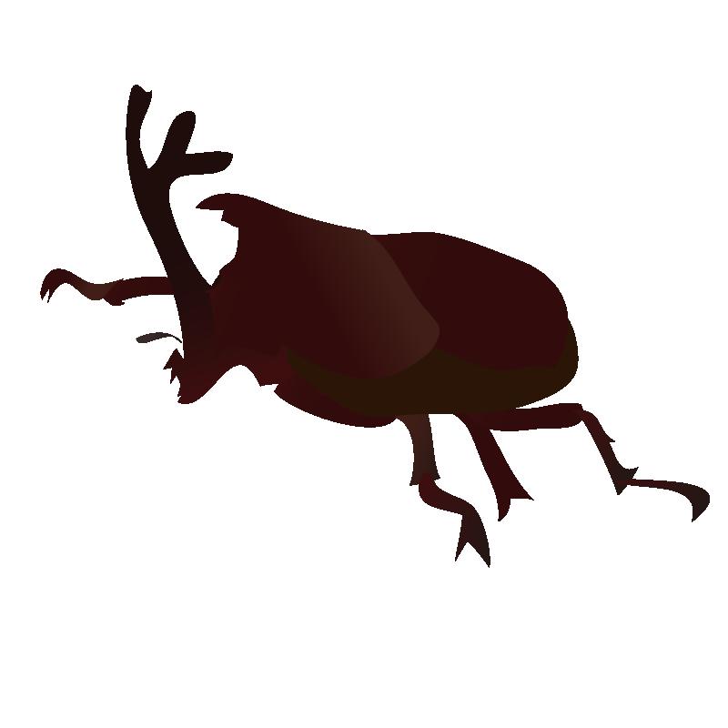 女王蜂_昆虫、虫のイラスト